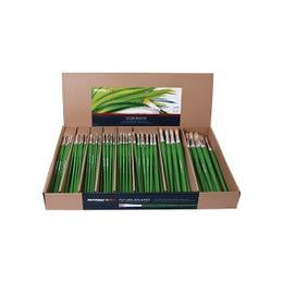 Roymac Future Brush Class Pack