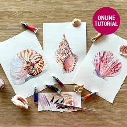 Winsor & Newton Cotman Watercolour Seashell Online Tutorial