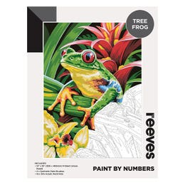 Reeves Artist Acrylic Paint by Numbers Tree Frog