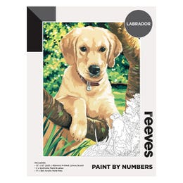 Reeves Artist Acrylic Paint by Numbers Labrador