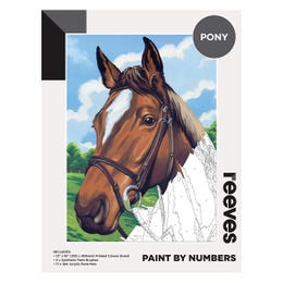 Reeves Artist Acrylic Paint by Numbers Pony