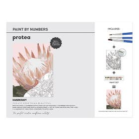 Kaisercraft Paint By Numbers Protea Canvas