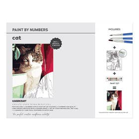 Kaisercraft Paint By Numbers Cat Canvas