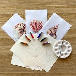 Winsor & Newton Cotman Watercolour Seashell Kit