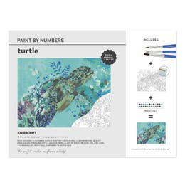 Kaisercraft Paint By Numbers Turtle Canvas