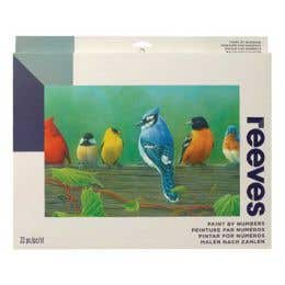 Reeves Artist Acrylic Paint by Numbers Rail Birds
