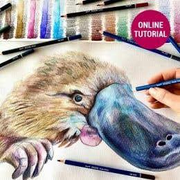 Jasart Studio Pencil Platypus Drawing Online Tutorial