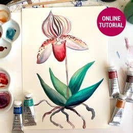 Winsor & Newton Professional Watercolour Botanical Online Tutorial