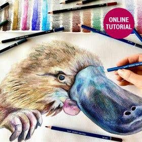 Jasart Studio Pencil Platypus Drawing Online Tutorial
