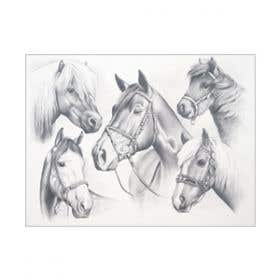 Reeves Large Sketch by Numbers (Horse Montage)