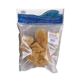 Sea Sponge Combination