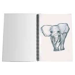Jasart Jumbo Visual Diaries 110gsm 100 Pages A3