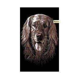 Reeves Mini Gold Scraperfoil (Dog)