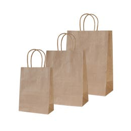 Twisted Handle Bags Kraft Large 250 x 350 x 110mm