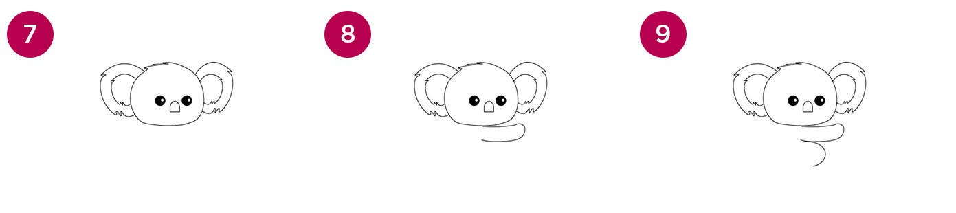 Koala Steps 7-9