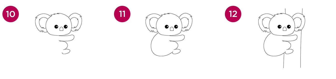 Koala Steps 10-12