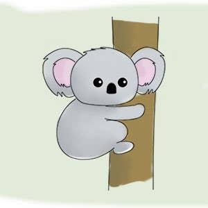 Koala Drawing for Kids