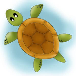 Turtle Drawing for Kids