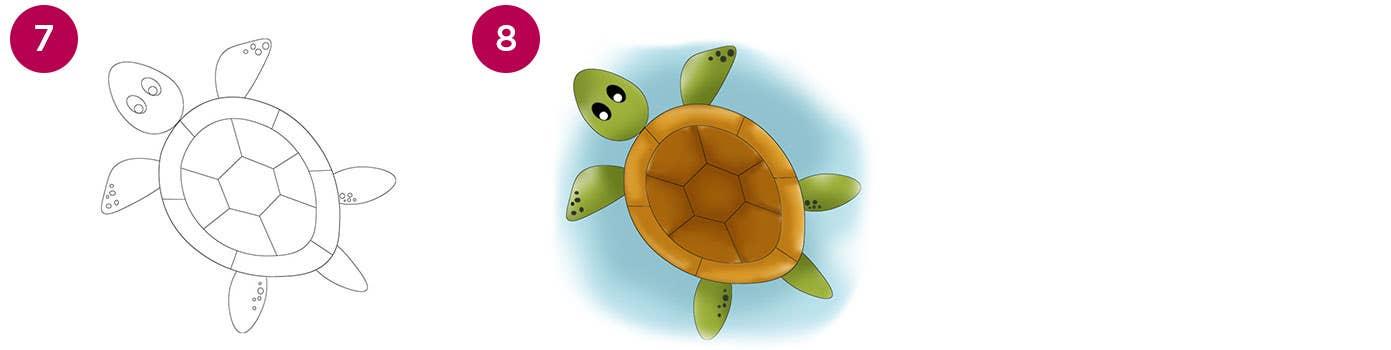 Turtle Steps 7-8