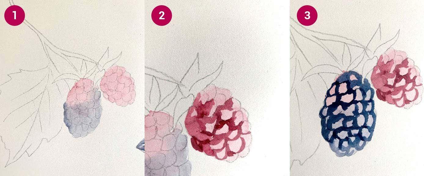 W&N Boysenberry Steps 1-3