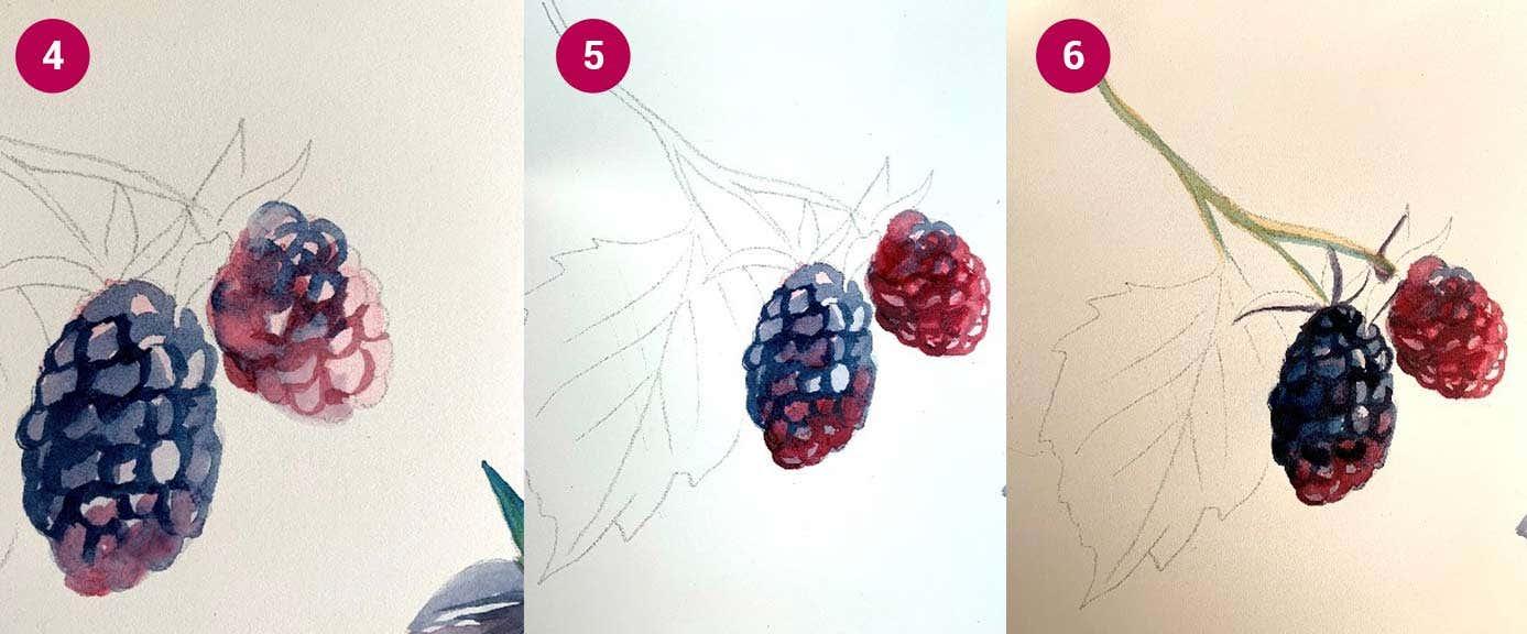 W&N Boysenberry Steps 4-6